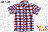 Шведка детская с коротким рукавом на кнопках р.92,98,104,110,116 SmileTime, красно-синяя клетка (детская)