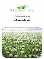 Семена газон Ривендел Dlf Trifolium Клевер белый (10кг)