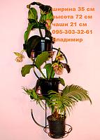 "Подставка для цветов ""Доллар"" на 3 чаши"