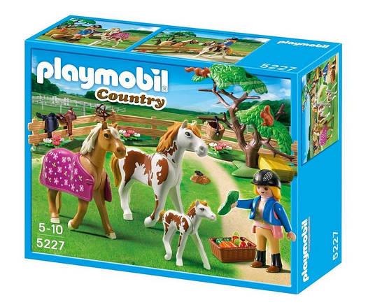 Playmobil 5227 Загін для коней (Плеймобил конструктор Загон для лошадей)