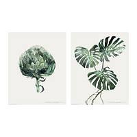 Набор постеров IKEA TVILLING 2 шт 40x50 см зеленые листья 003.990.90