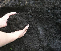Грунт растительный, фото 1