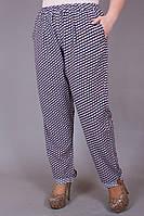 Брюки женские большого размера Круги софт, женские брюки баталы