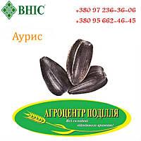 Семена подсолнечника под гербициды АУРИС устойчив к Гранстару, ВНИС