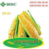 Семена кукурузы ВН 63 (ФАО 280) ВНИС, фото 1
