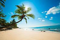 Фотообои пляж,пальмы, море