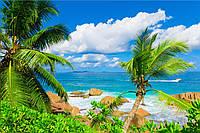 Фотообои пальмы,океан