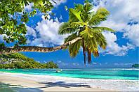 Фотообои пальмы на пляже
