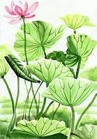 Фотообои цветы акварель