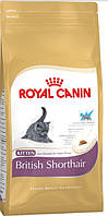 Корм Royal Canin (Роял Канин) KITTEN BRITISH SHORTHAIR для котят породы британской короткошерстно 0.4 кг