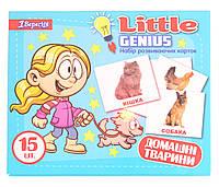 Набор детских карточек Домашние животные, 15 шт в наборе (укр)