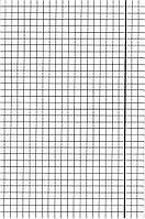 Тетрадь для слабовидящих 12 листов, клетка (в крупную клетку)
