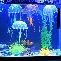 Медуза в аквариум большая - диаметр 9,5-10см