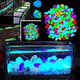 Фосфорные салатовые камни в аквариум - в наборе 10штук, (размер одного камня 1,5-2,5см), фото 5