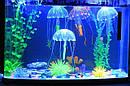 Все для аквариума