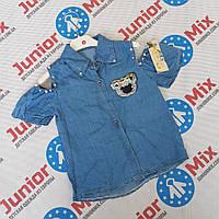 Детская джинсовая рубашка для девочек оптом B.B.W kids
