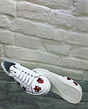 Кеды женские Dolce Gabbana белые кожаные, фото 5