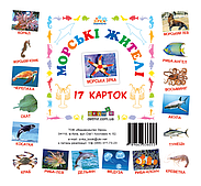 Картки міні Морські жителі 11*11 см (72752)