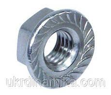 Фланцева Гайка М20 ГОСТ 9064-75 з нерж сталі, фото 3