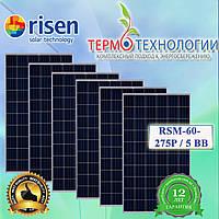 Солнечные батареи Risen-60-275P/5 BB