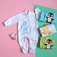 Человечек на кнопках х/б однотонный под накат одежда для новорожденного р.20,22,24,26