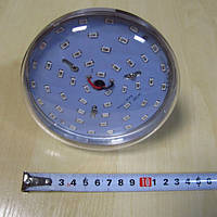Светодиодная лампа BULB16F R:B=4:2 ( 4 красных 2 синих ФИТО свет )