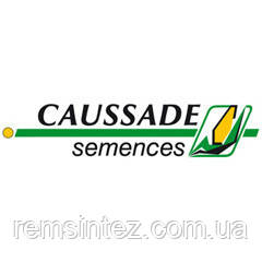 Семена кукурузы Кларити КС (ФАО 330)