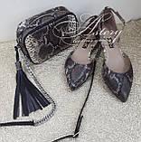 Женские коричнево-серые балетки из питона, фото 3