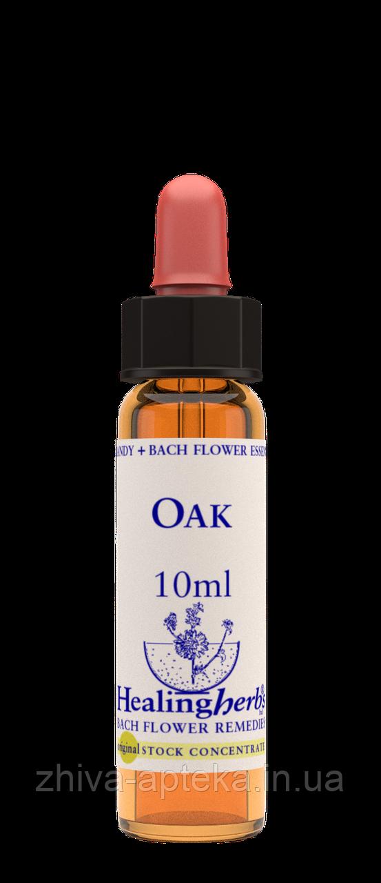 Цветы Баха. OAK - Дуб (№ 22) Healing Herbs