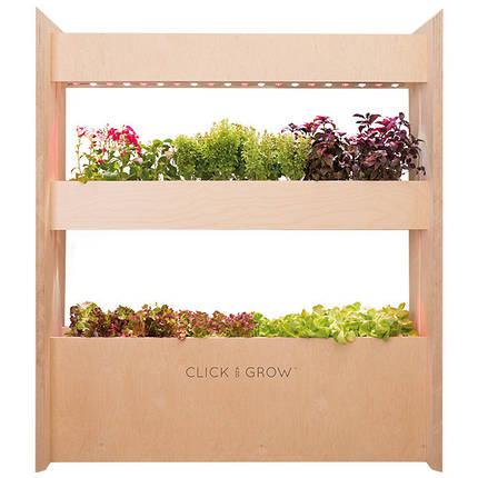 Домашний умный сад Wall Farm Mini Click&Grow 36, фото 2