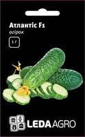 "Семена огурца  Атлантис F1, 50 сем., женского типа цветения, ТМ ""ЛедаАгро"""