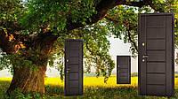Двери входные с ковкой 96 х 2,05 бесплатная доставка