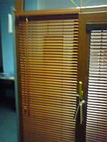 Бамбук 25 мм., фото 1