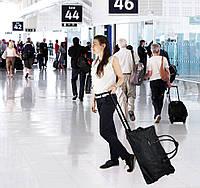 Спортивная сумка-чемодан на колесиках