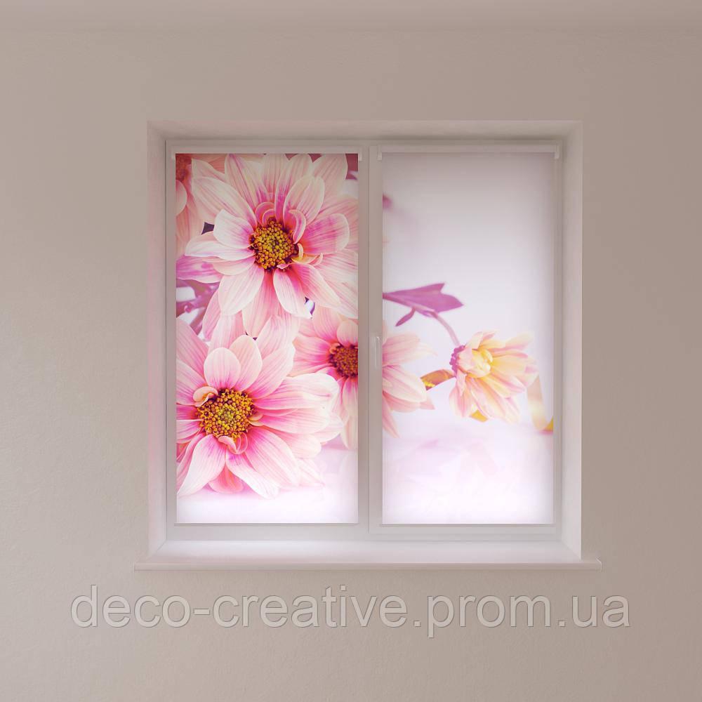 Рулонные шторы цветы крупным планом
