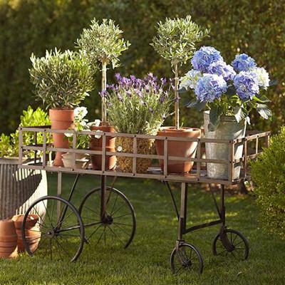Садовый декор, клумбы