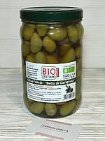 Оливки гиганты Olive Verdi Bella di cerignola BIO