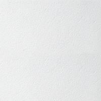 Підвісна стеля Armstrong Retail board 600x600x12мм Потолочная плитка