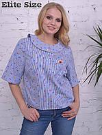 Коттоновая блузка большого размера Производитель ТМ Elite Size Прямой поставщик Официальный сайт 44-502