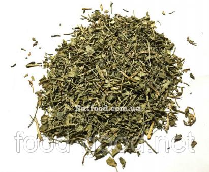 Сельдерей зелень, 100г, фото 2