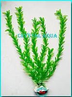 Растение 46см №7