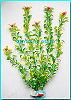 Растение 46см №8
