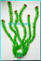 Растение 55см №1