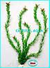 Растение 55см №4