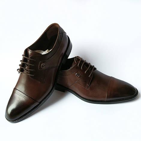 Турецкая мужская обувь : элитные, классические кожаные туфли, шоколадного цвета, тонированные