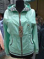 Женская короновая ветровка с капюшоном YLANNI №982