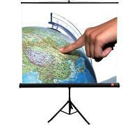 Экран проекционный AVTEK Tripod Standard 200 x 200cm