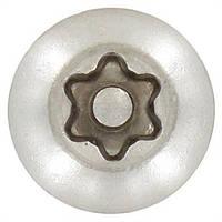 Винт защитный М3х8 (ISO 7380-2) TORX-PIN (полукруглая голова) нержавеющая сталь А2