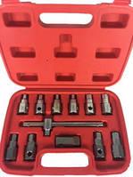 Комплект головок для маслосливных пробок 12 предметов 1-C1001 Ampro