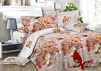 Комплект постельного белья XHY377